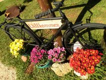 Bicycle Welcome Sign Flowers Stock Image