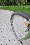 Bicycle wheel on an alley in a park Royalty Free Stock Photos
