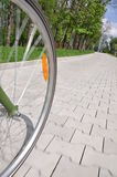 Bicycle wheel on an alley in a park Royalty Free Stock Images