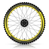 Bicycle wheel with a best sports tire on white background. Stock Image