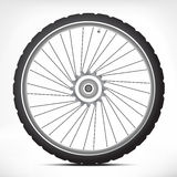 Bicycle wheel. Black bicycle wheel with metallic parts Royalty Free Stock Image