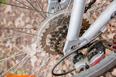 Bicycle wheel closeup Royalty Free Stock Images