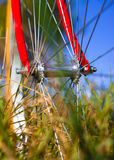 Bicycle Wheel - colorful Stock Photos