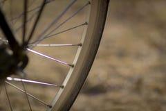 Bicycle wheel detail. Detail of bike wheel, part of spokes and tyren Stock Photo