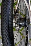 Bicycle wheel. Detail 17 Stock Photos