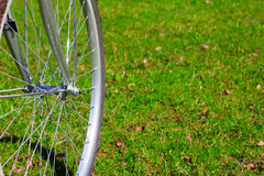 Bicycle wheel on grass. Bicycle wheel on first spring grass background Royalty Free Stock Image