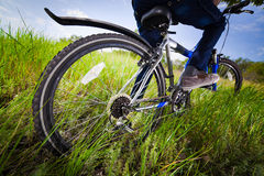 Bicycle wheel in the  grass Royalty Free Stock Images