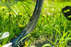 Bicycle wheel in the grass Stock Photography