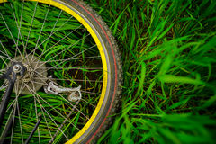 Bicycle wheel on green grass royalty free stock photography