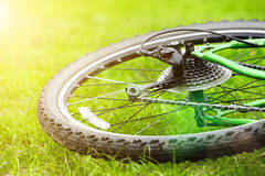 Bicycle wheel on green grass stock photo