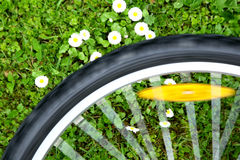 Bicycle wheel on green meadow background Stock Photo