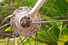 Bicycle wheel hub. Part of cycling wheel Stock Photo