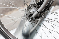 Bicycle wheel. Royalty Free Stock Image