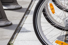 Bicycle wheel. Royalty Free Stock Photo