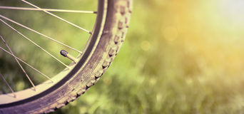 Bicycle wheel retro banner Royalty Free Stock Images