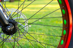 Bicycle wheel on road Stock Images