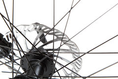 Bicycle wheel with spokes on a white background. Royalty Free Stock Images