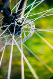 Bicycle Wheel In The Summer Green Grass Meadow Royalty Free Stock Image