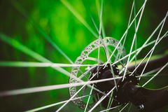 Bicycle Wheel In The Summer Green Grass Meadow Royalty Free Stock Images