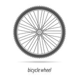 Bicycle wheel vector isolated. Bicycle wheel vector black and white colors on white field Stock Image