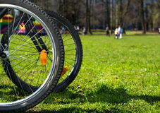 Bicycle wheels Stock Photo