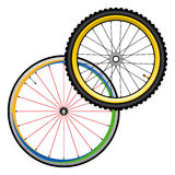 Bicycle wheels for road and mountain bike royalty free stock photos