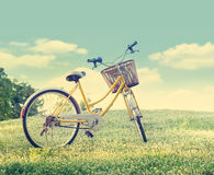 Bicycle on the white flower field and grass in sunshine nature background, Pastel and vintage color tone. Bicycle on the white flower field and grass in sunshine Royalty Free Stock Image
