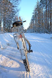 Bicycle on winter road Stock Photos