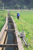 Bicycle & Woman in Rural Vietnam. A vintage bicycle leaning against a waterway.  Unfocused in the background is a woman walking through, and working in, a field Royalty Free Stock Photo