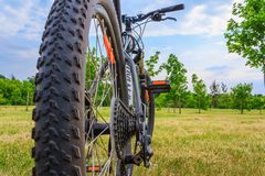 Bicycle in the woods Royalty Free Stock Photo