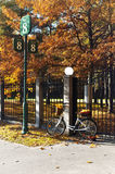 Bicycle with yellow leaves in wicker near shod fence in autumn p Royalty Free Stock Photo