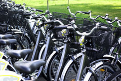 Bicycles. In row for public use, encouraging ecological transportation Royalty Free Stock Photography