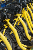Bicycles. Row of bicycles waiting for renting Stock Photo