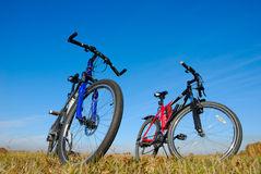 Bicycles Stock Image