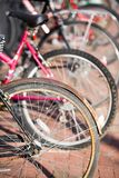Bicycles. Parked bikes Stock Photography