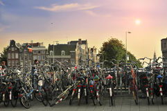 Bicycles in Amsterdam. In a sunny day Royalty Free Stock Image