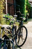 Bicycles In Amsterdam City. Bicycles Near Dutch Houses In Amsterdam City Stock Photography