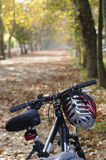 Bicycles in autumn. Bicycles with autumn leaves and trees Stock Photos