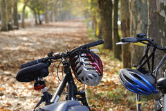 Bicycles in autumn. Bicycles with autumn leaves and trees Royalty Free Stock Photography