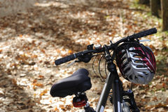 Bicycles in autumn. Bicycles with autumn leaves and trees Royalty Free Stock Photo