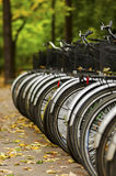 Bicycles in autumn Royalty Free Stock Photos