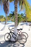Bicycles bike on coconut palm tree caribbean beach. Background Royalty Free Stock Image