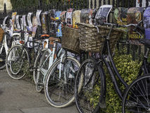 Bicycles chained up against a metal railed fence Stock Images