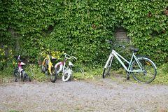Bicycles for children of all ages near ivy-covered houses stock image