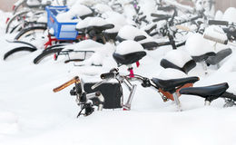 Bicycles covered with snow in big snowdrift. European city winter fragment. Bicycles covered with snow in big snowdrift Royalty Free Stock Photos