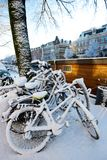 Bicycles covered in snow. Bicycles parked under a tree, after a snowy night, cycling culture Stock Photos