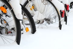 Bicycles covered by snow only tires Royalty Free Stock Image