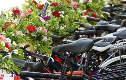 Bicycles decorated with flowers Stock Images