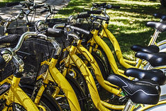 Bicycles.Detail Royalty Free Stock Photo