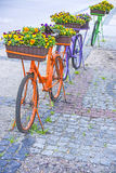 Bicycles with flowers Royalty Free Stock Photos